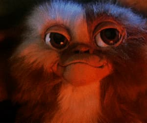 gif, gremlins, and 80's movies image