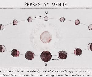 theme, Venus, and rp image