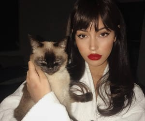 girl, cindy kimberly, and cat image