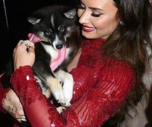 demi lovato, dog, and cute image