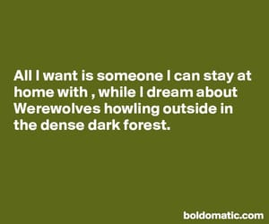 quote, love, and werewolves image