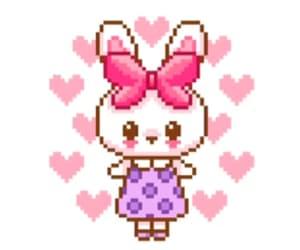 animal, bunny, and coeur image