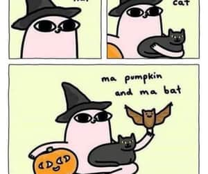 autumn, meme, and cat image
