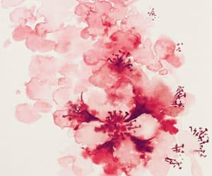 art, cherry blossom, and watercolor image