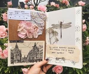 diary and journals image