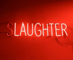 neon, laughter, and light image
