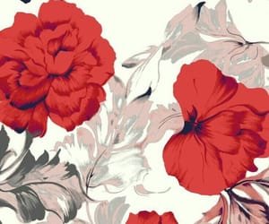 wallpaper, background, and red image