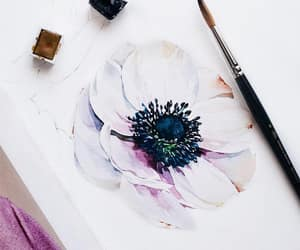 anemones, art, and painting image