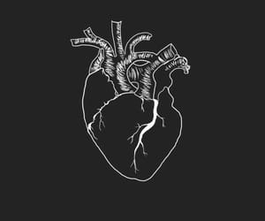 art, black, and heart image