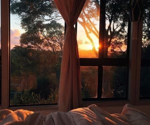 sunset, nature, and bed image