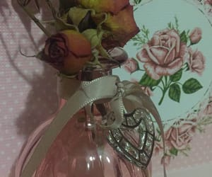 lovely, pink, and roses image