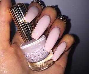 beauty, nail polish, and pink image