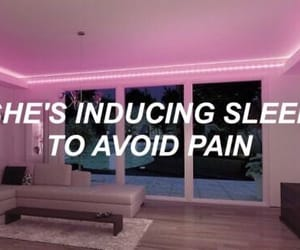 the 1975, quotes, and Lyrics image