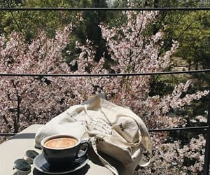 coffee and cherry blossoms image