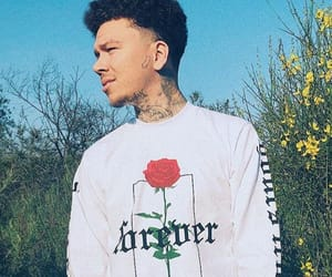icons, phora, and phoraicons image