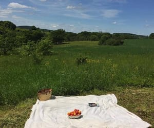 nature, photography, and picnic image