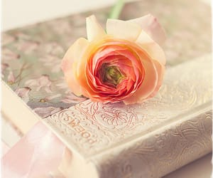 flowers, book, and poems image