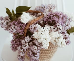 basket, flowers, and lilac image