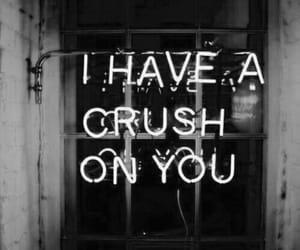 crush, neon, and light image