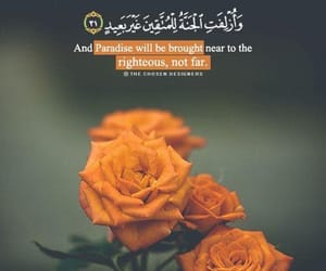 paradise, quran, and flowers image
