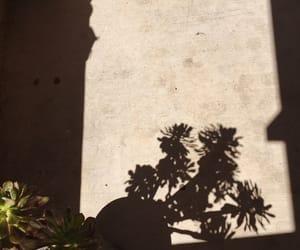 aesthetic, glow, and shadow image