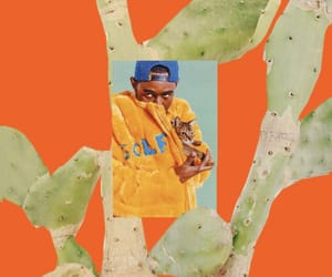 aesthetic, cactus, and Collage image