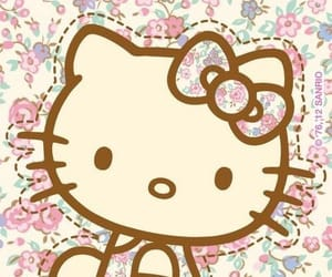 flowers, hello kitty, and pink image