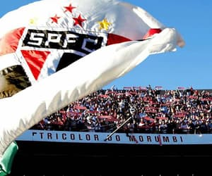 sp, spfc, and tricolor do morumbi image