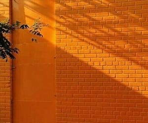 brick wall, mexico, and street image