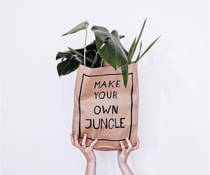 bag, hands, and jungle image