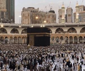 arab, arabian, and gif image