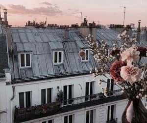 flowers, paris, and sunset image