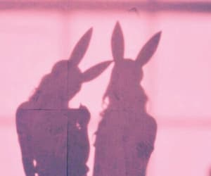 girl, bunny, and aesthetic image