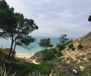 Albufeira, nature, and portugal image