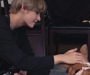 aesthetic, tae, and v image