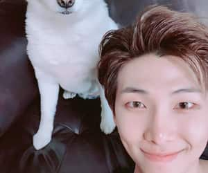 selca, rm, and bts image