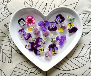 dish pansies decor image