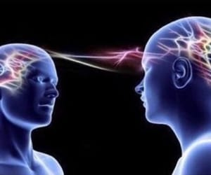 telepathy and brain meme image