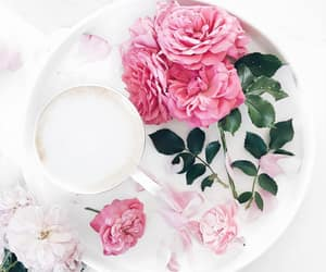 cappuccino, coffee, and flowers image