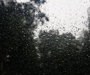 rain, raindrops, and wallpaper image