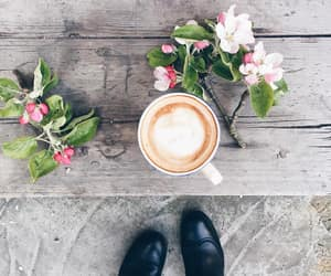 cappuccino, spring, and spring blossoms image