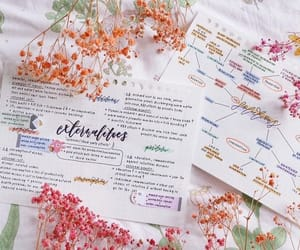 calligraphy, flowers, and inspiration image