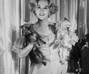 actress, glamorous, and beautiful image
