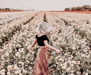beautiful, fashion, and field image