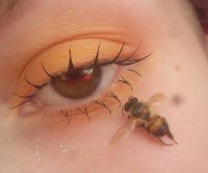 bee, mascara, and orange image