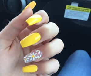 nails, yellow, and sunflowers image