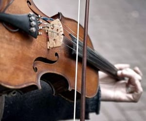 violin, music, and vintage image
