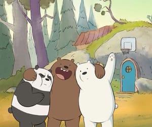 bear and panda image