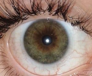 aesthetics, eyes, and green image