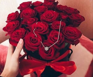 rose, flowers, and goals image
